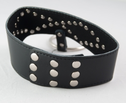 Leather Black Collar with O Ring